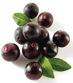 Acai Berry – najsilnejší antioxidant