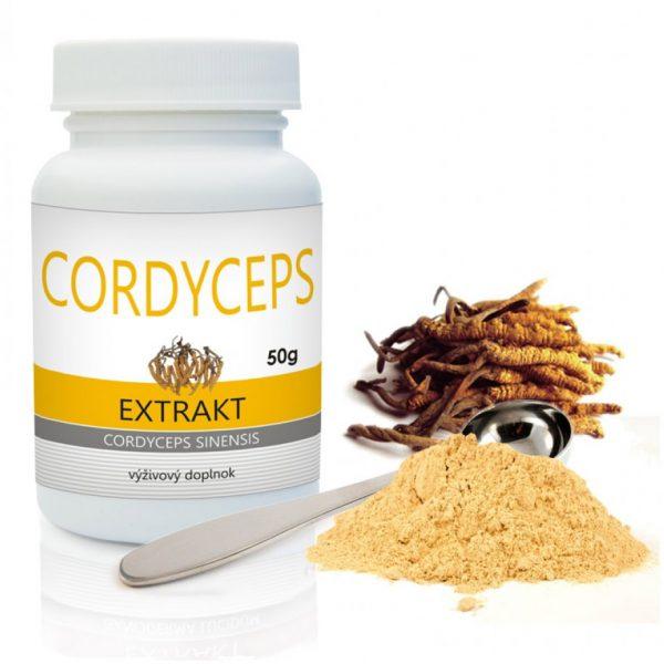 cordyceps-extrakt