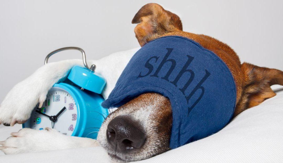 Jednoduchá a prirodzená detoxikácia organizmu počas spánku